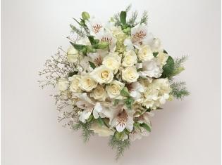 Картинки цветов белые розы