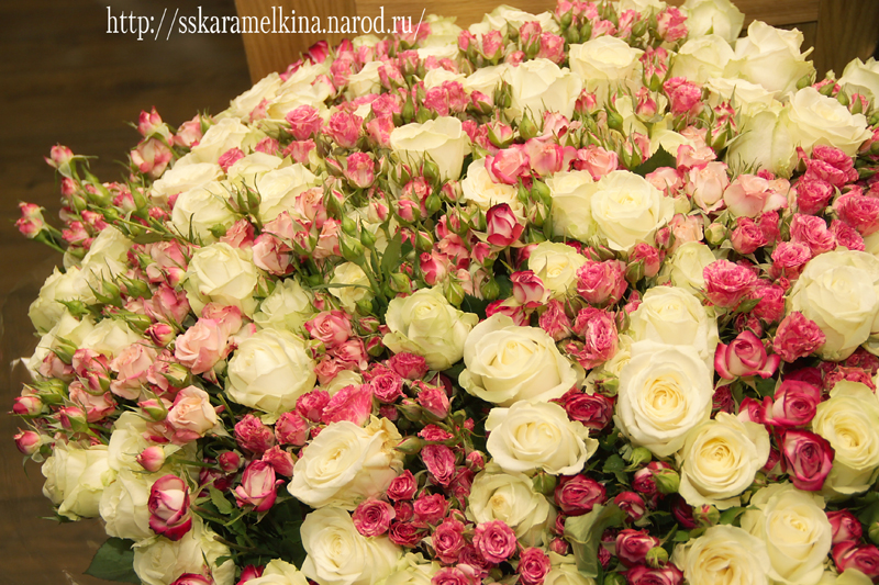 Фото цветов на день рождения