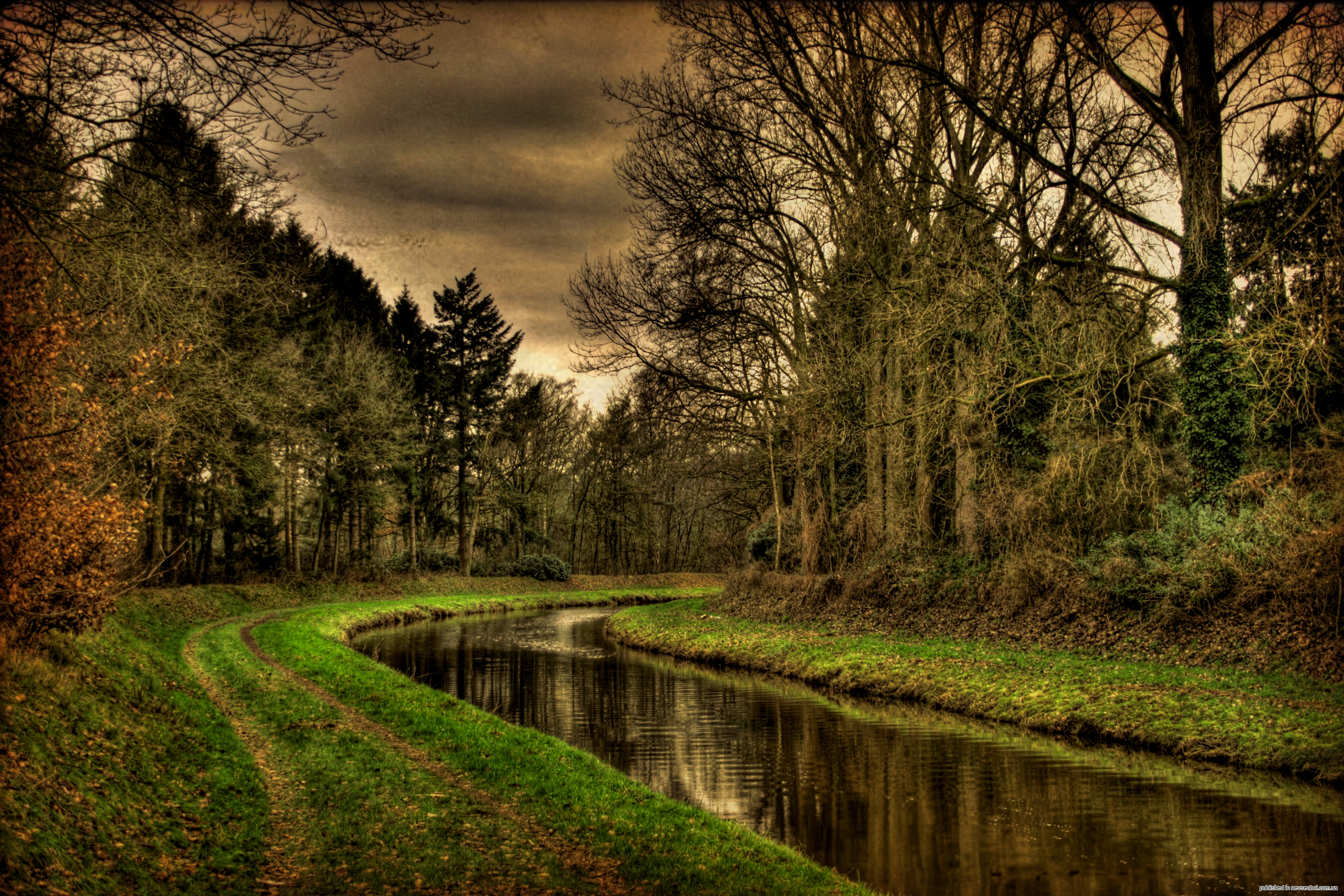 Смотреть фото природы бесплатно