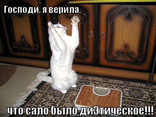 http://dreempics.com/img/picture/Nov/21/336c7392766cff05a57b30c5c85d9c9e/2.jpg