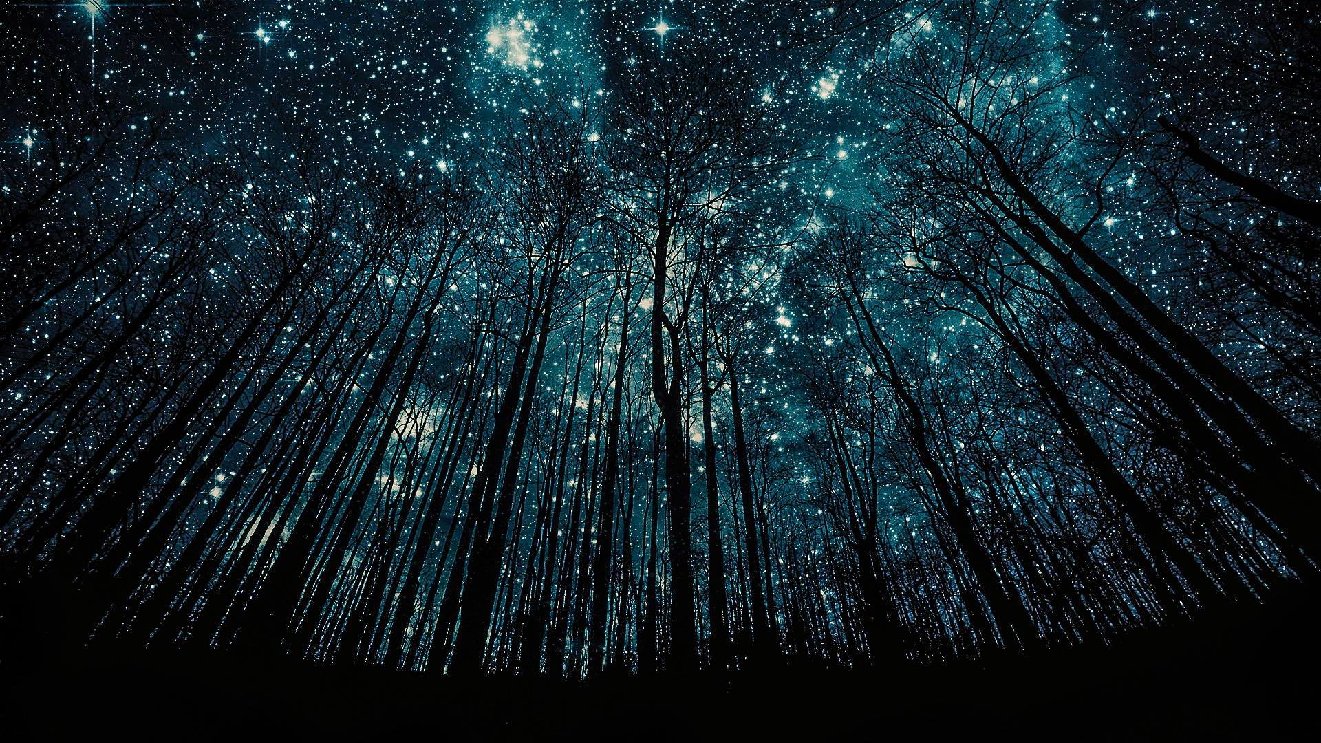Обои На Телефон Звездное Небо Скачать Бесплатно