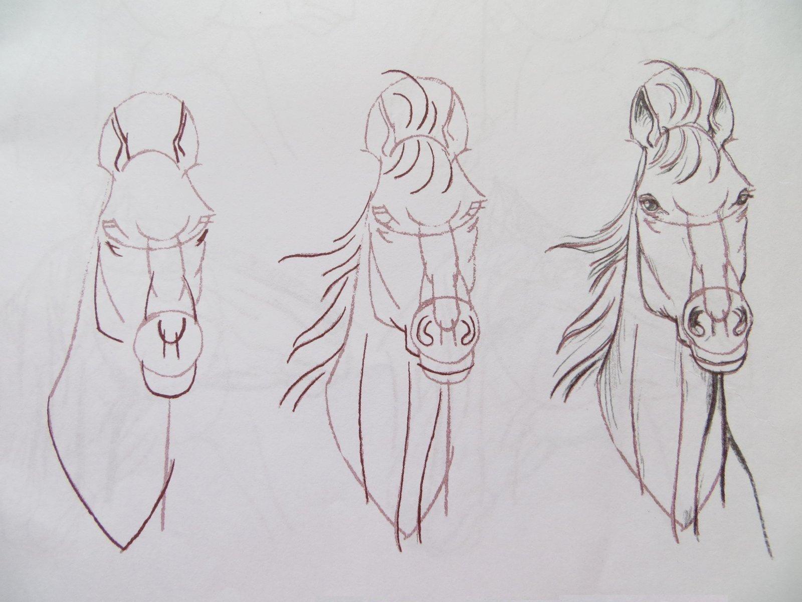 Пошаговое рисование карандашом фото