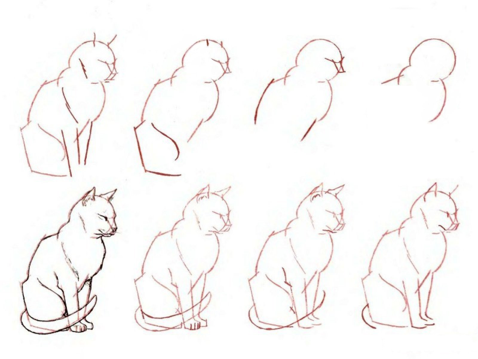 Как сделать котёнка поэтапно