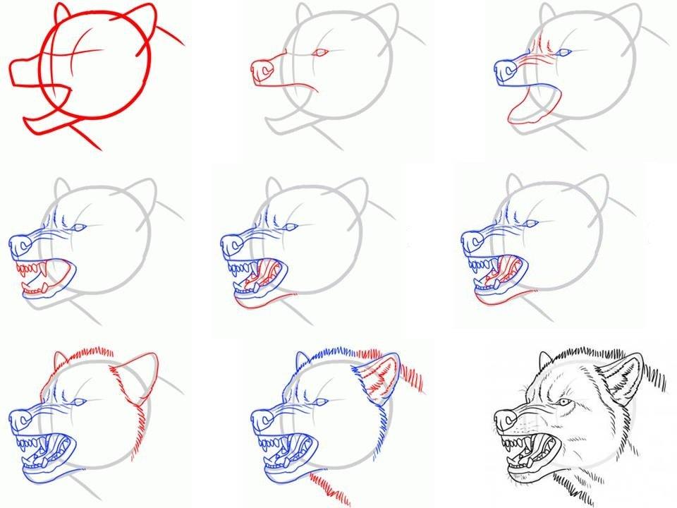 Как научится поэтапно простым карандашом рисовать