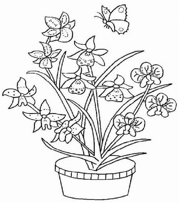 Как нарисовать карандашом цветок картинки