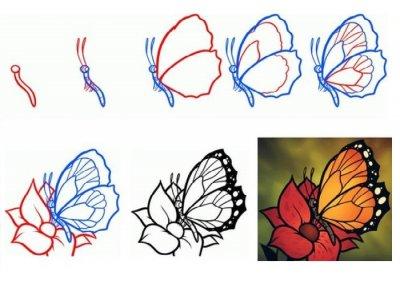Как нарисовать карандашом поэтапно бабочку