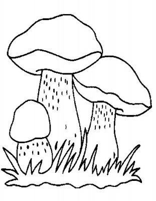 Как нарисовать гриб, грибы карандашом поэтапно