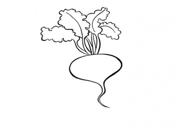 кольраби раскраска Dreempics Com картинки и рисунки на